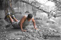 #Bent Knee #Push ups #Fitness model #Motivation#Knee push ups#FORGE FITNESS#