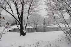 Our beautiful grounds after a snowfall!