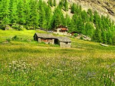 Cogne valley - Valle d'Aosta - Italy | Cogne - Official site… | Flickr