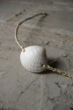 Sea Shell Bracelet... would look nice tied around a white dipped dyed pillar candle