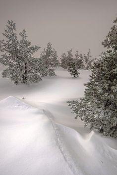 """ llego la nieve by (Gustavo Meana) "" Winter Snow, Winter Time, Winter Season, Beautiful World, Beautiful Places, Weather Seasons, Winter Scenery, Winter's Tale, Snow Scenes"