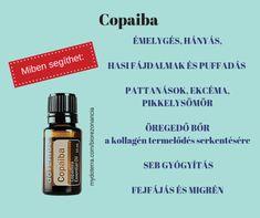 doTerra receptek - Miben segíthet a Copaiba? Health 2020, Copaiba, Doterra, Essential Oils, Collages, Essential Oil Uses, Doterra Essential Oils, Essential Oil Blends