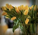 Should You Have a Memorial Service Instead of a Funeral?