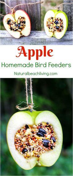 How to Make Apple Birdseed Homemade Bird Feeders, Apple Bird Feeders, Easy Homemade Bird Feeders, Great Fall Craft for Kids, Homemade Bird Treats, Apple Activities