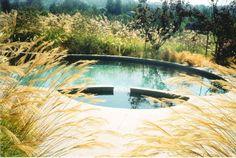 Bay Area Pools    Burlingame, CA    www.bayareapools.net