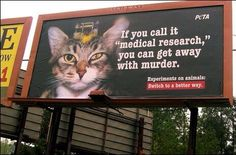 Stop Animal Experiments!