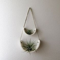 Small white hanging air plant cradles just added to the shop! ✨mudpuppyceramicstudio