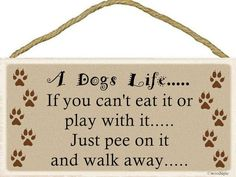 A Dogs Life...Sign 5''x10'' Wood, New, Hanging indoor plaque Celebrate your four-legged friend!
