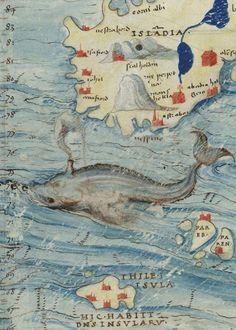 Cartes marines, mappemonde, avec quelques cartes géographiques terrestres (16th century)