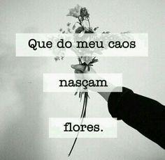 Que o meu caos nascam flores.