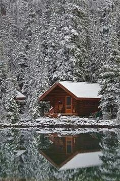 cabin in the pines