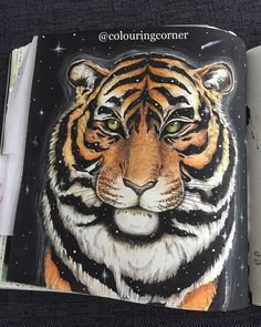 And that's the tiger all done!  #morphiamay #kerbyrosanes #imagimorphia #tiger #stars #starlight #space #coloring #colouring #colouringbook #coloringbookforadults  #coloringbook #målarbokförvuxna #målarböckerförvuxna