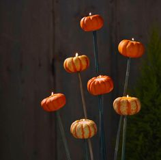 How to make tiny pumpkin torches in a few simple steps.