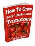 How To Grow Sexy Upside-Down Tomatoes Tomatoes are called 'Love Apples' for good reason. Ripe, red tomatoes have proven sex appeal. Types Of Tomatoes, Varieties Of Tomatoes, Growing Tomato Plants, Growing Tomatoes, Tomato Growers, Tomato Farming, Red Tomato, How To Grow Taller, Plant Needs