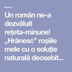 """Un român ne-a dezvăluit rețeta-minune! """"Hrănesc"""" roșiile mele cu o soluție naturală deosebită! Producția este cum nu m-am așteptat vreodată! Iată care este secretul: – loon.ro Roman, Beautiful Flowers Garden, Gardening, Plant, Lawn And Garden, Horticulture"""