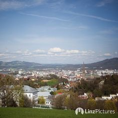 Frühling!  . . . #spring #frühling #linz #igerslinz #city #pictureoftheday #potd #igersaustria #yellow #officeview #upperaustria #view #zentrum #instadaily #weather #moments #qualitytime #downtown #travel #landscape #mountains #wildlife #nature #outdoor #green #linzpictures