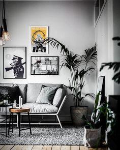 Foto — Nero Interior