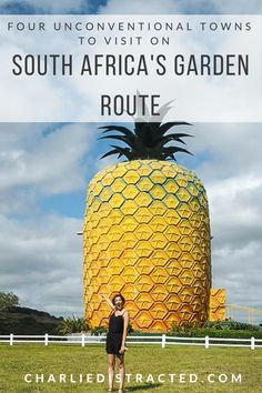 Four Unconventional Towns to Visit on South Africa's Garden Route