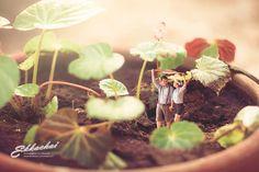 miniature-wedding-3