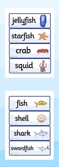 Twinkl Resources >> Under The Sea Word Cards  >> Thousands of printable primary teaching resources for EYFS, KS1, KS2 and beyond! word card, under the sea, sea, seaside, topic, water, tide, fish, sea creatures, shark, whale, marine, dolphin, starfish, waves, sand,