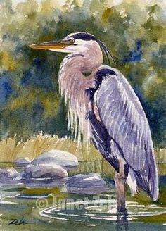 great blue heron watercolor