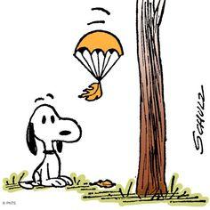 It's a Snoopy Autumn