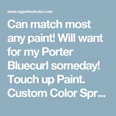 Can match most any paint!  Will want for my Porter Bluecurl someday! Touch up Paint. Custom Color Spray Paint, Paint Pens and Paint Color Sample Jars. Free Shipping.