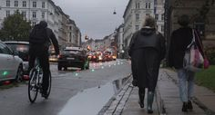 """Copenhagen, Denmark. """"Green Wave"""" in-pavement LED lighting for cyclists."""