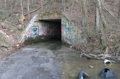 Tredegar Rd. tunnel in Jacksonville, AL. Who woulda thought I would find this on Pinterest?!