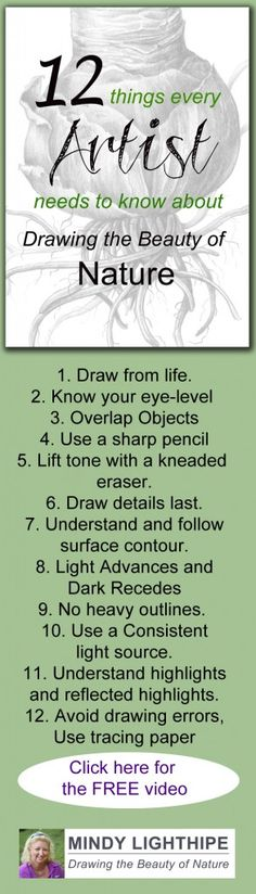 To find out more about Drawing the Beauty of Nature and to see my 12 Essential Drawing Tips Video visit: http://www.mindylighthipe.com/back-to-basics/