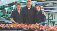 Crist Brothers Orchards, a Red Wing Software customer! Check out this article they are in for Fruit Growers News- Facilities use less energy, improve efficiency