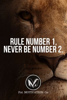 Be number one. Follow all our motivational and inspirational quotes. Follow the link to Get our Motivational and Inspirational Apparel and Home Décor. #quote #quotes #qotd #quoteoftheday #motivation #inspiredaily #inspiration #entrepreneurship #goals #dreams #hustle #grind #successquotes #businessquotes #lifestyle #success #fitness #businessman #businessWoman #Inspirational