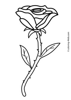 Rose flower coloring pages for kids, printable, 1