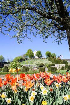 Swiss Excursion Tips, Inspirat … - Travel Destinations Parks, Golf Courses, Travel Destinations, Adventure, Spring, Tips, Inspiration, Sevilla, Tulips Garden