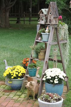 old ladder dressed with birdhouses & plants.... <3