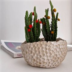 Are you interested in our Handmade ceramic bowl? With our Handmade ceramic planter you need look no further. Stoneware Clay, Ceramic Clay, Ceramic Bowls, Ceramic Wall Art, The Potter's Wheel, Ceramic Planters, Hanging Baskets, Potted Plants, Decorative Bowls