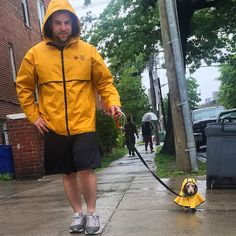 wiener wearing a raincoat... heh