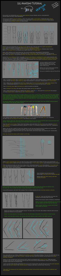 Leg Anatomy Tutorial (Version 2) by Jejihu.deviantart.com on @DeviantArt