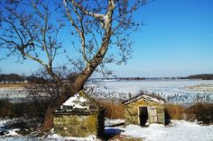 Winter 2014 Photo Contest Winners! « Residential Properties LTD. Residential Properties LTD.