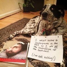 Dog Shaming features the most hilarious, most shameful, and never-before-seen doggie misdeeds. Join us by sharing in the shaming and laughing as Dog Shaming reminds us that unconditional love goes both ways. I Love Dogs, Puppy Love, Cute Dogs, Funny Dogs, Funny Animals, Cute Animals, Silly Dogs, Animal Fun, Unique Animals