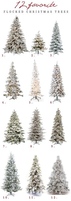 The Best Flocked Christmas trees available online from 3' to 12' tall