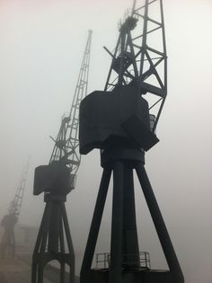 Cranes through fog at Royal Victoria Dock photograph by tom booker