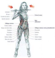 Exercícios: Abdômen | Planeta do Corpo