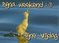 Bijna weekend...