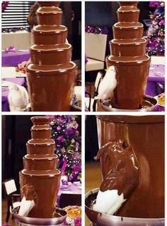 Chocolate covered Parrot. Parrot eating from chocolate fountain.