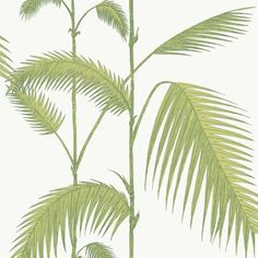 Palm wallpaper by Cole & Son. In a new colour combination : leafy green on ivory.