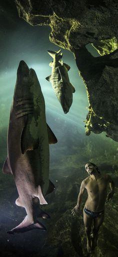 Dangerous Swim. #redbull #cliffdiving