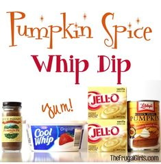 Pumpkin Spice Whip Dip Recipe! ~ from TheFrugalGirls.com ~ if you could capture the tastes of Fall in a dip... this is it! YUM! #recipes #pumpkins #thefrugalgirls