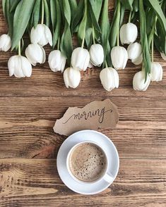 Are you searching for inspiration for good morning coffee?Browse around this site for very best good morning coffee ideas. These unique images will you laugh. Best Coffee, My Coffee, Coffee Time, Coffee Shop, Ninja Coffee, Coffee Mugs, Cuban Coffee, Coffee Maker, Coffee Creamer