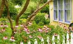 Garden Tours with Frank Kershaw begin this season with Return to Niagara Spring on May Highlights include intimate gardens. Lee Valley, Spring Garden, Soft Colors, Day Trips, Botanical Gardens, Lawn, Places To Visit, Backyard, Tours